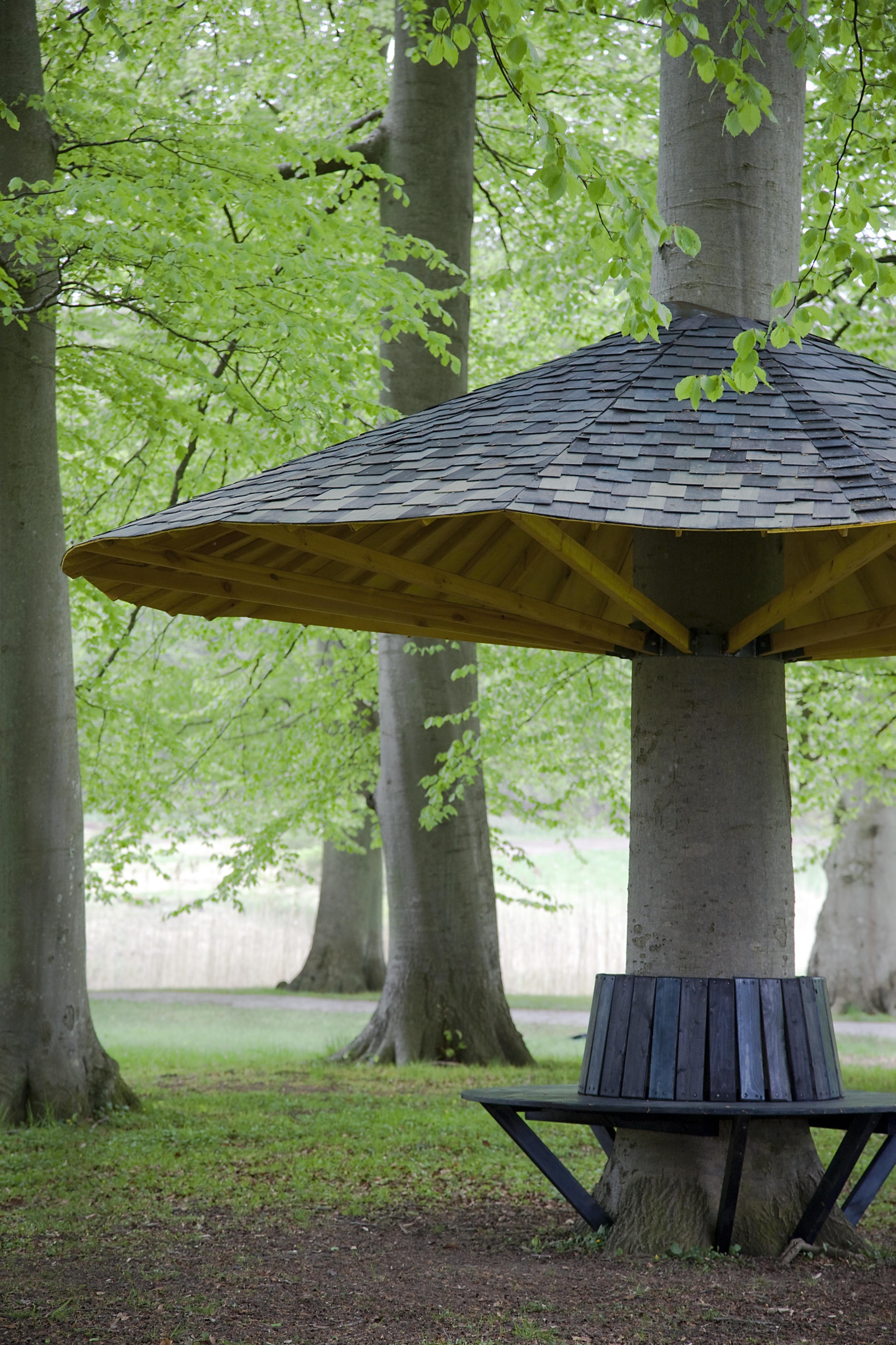 Randi og Katrines Pavillontræ_3